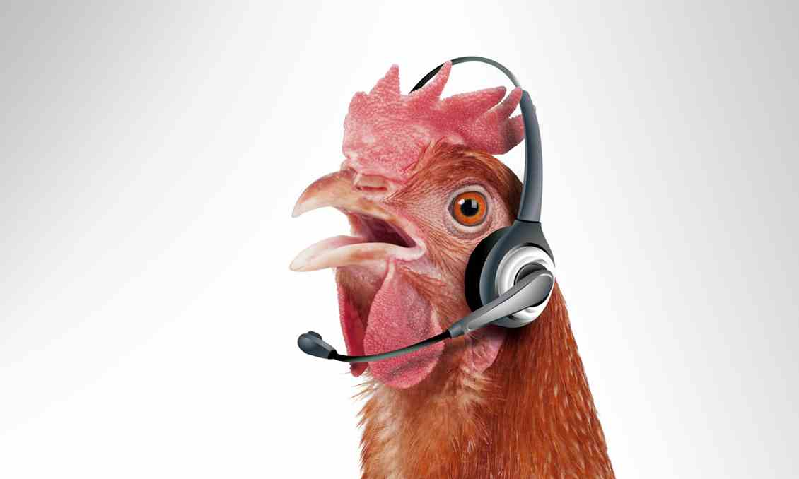 Why call centres must go free range ContactEngine blog BL104